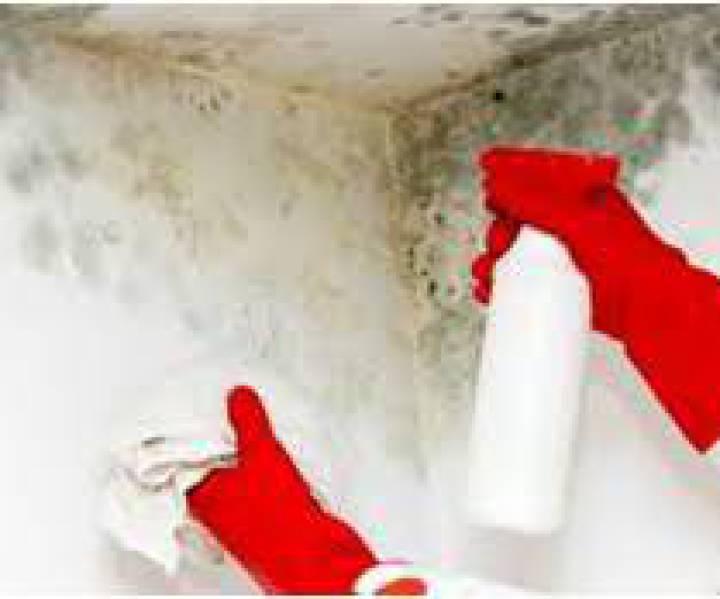 condensacion en paredes