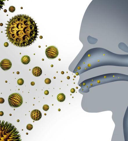 consecuencias de la humedad para la salud